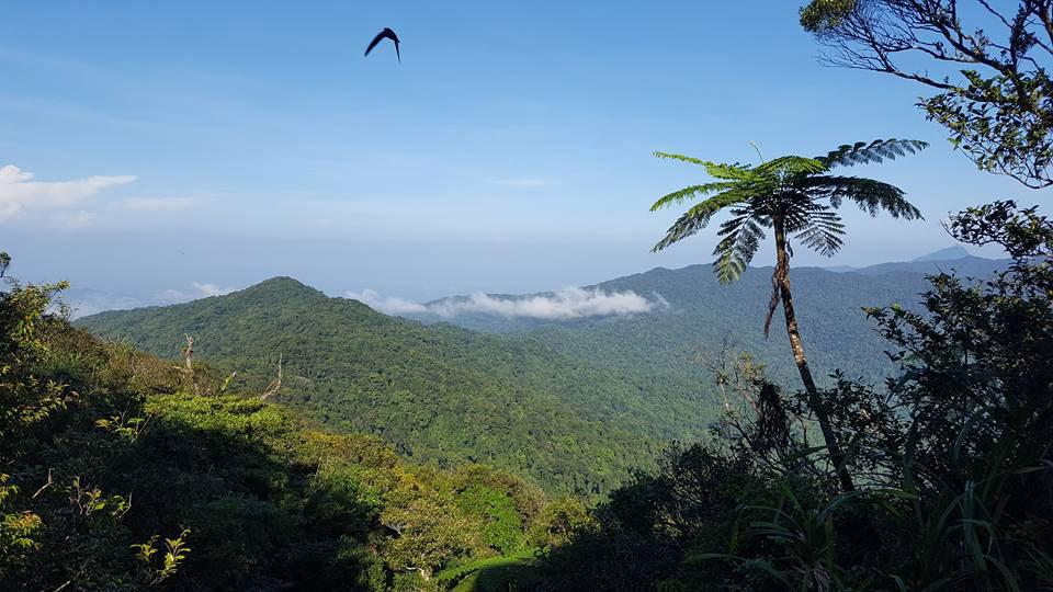 TRIP: PENINSULAR THAILAND 5 DAYS